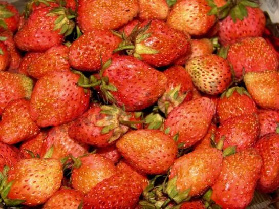 ягоды клубники фото