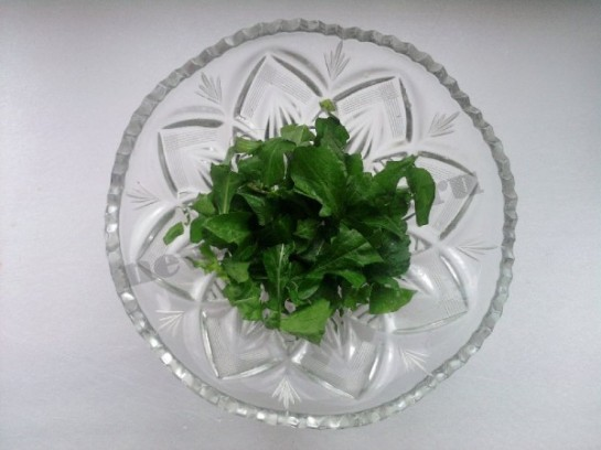 руккола салат фото 3