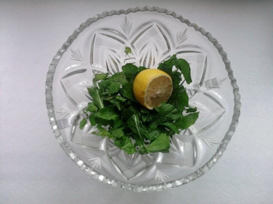 руккола салат фото 5