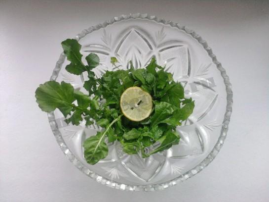 руккола салат фото 7