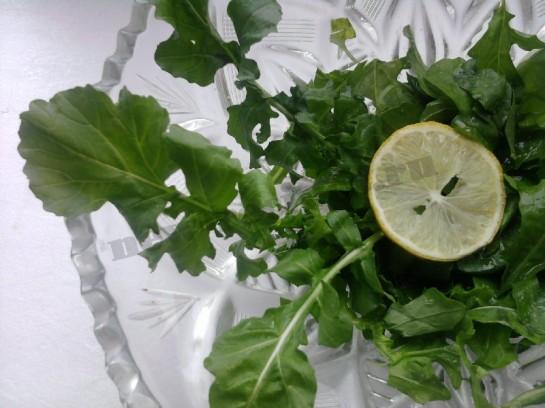 руккола салат фото