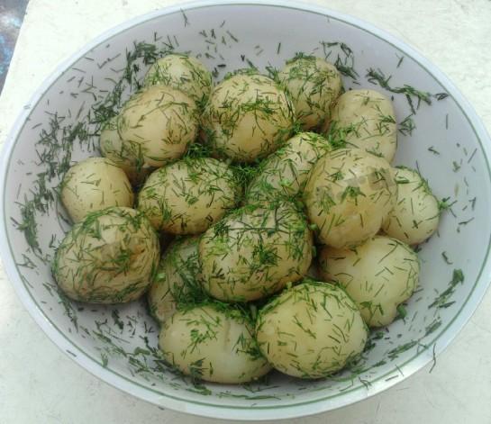 молодая картошка рецепт
