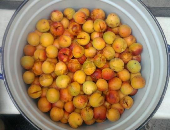 варенье из абрикос и смородины 3