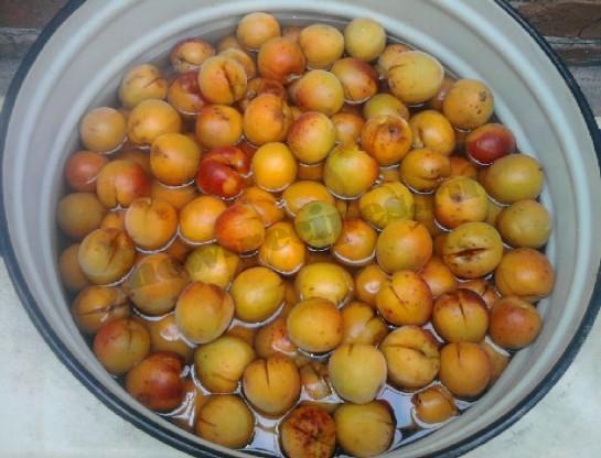 варенье из абрикос и смородины 4