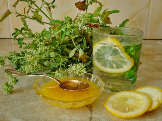http://new-recipes.ru/wp-content/uploads/2012/07/%D1%87%D0%B0%D0%B9-%D1%81-%D0%BC%D0%B5%D0%BB%D0%B8%D1%81%D1%81%D0%BE%D0%B9-3-e1343760408424.jpg