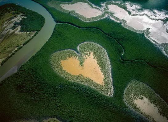природа в виде сердца
