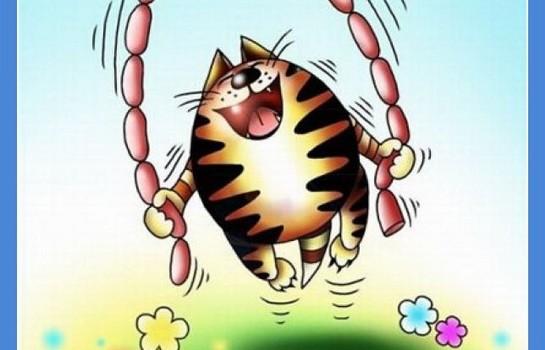 смешные картинки с едой и котами)
