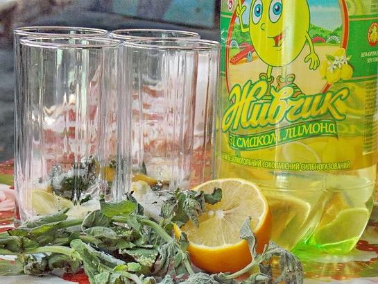 ингредиеты для домашнего мохито