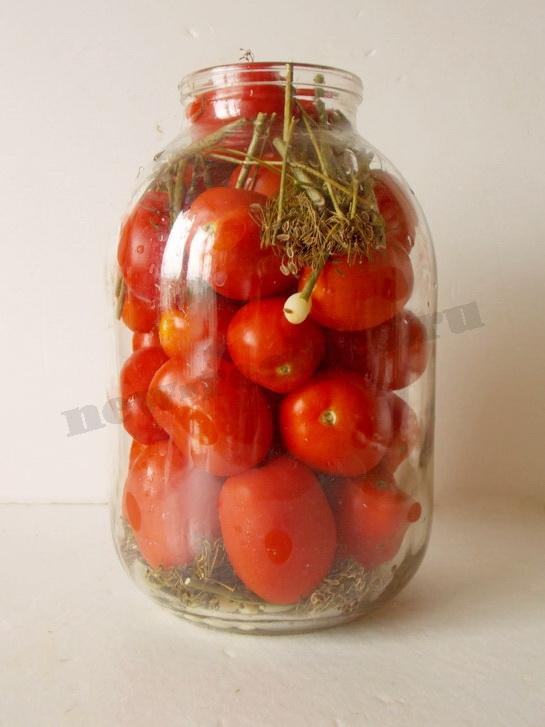 складываем помидоры в банку