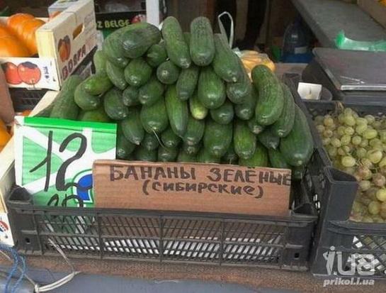 смешная кулинария прикольные ценники (4)