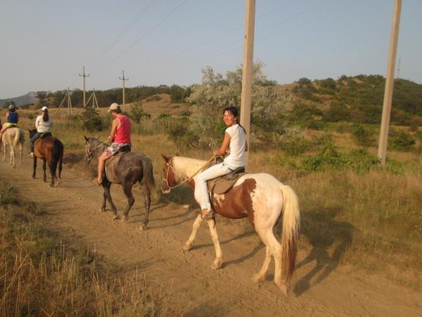 на коне!