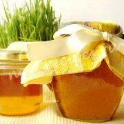 одуванчиковый мёд